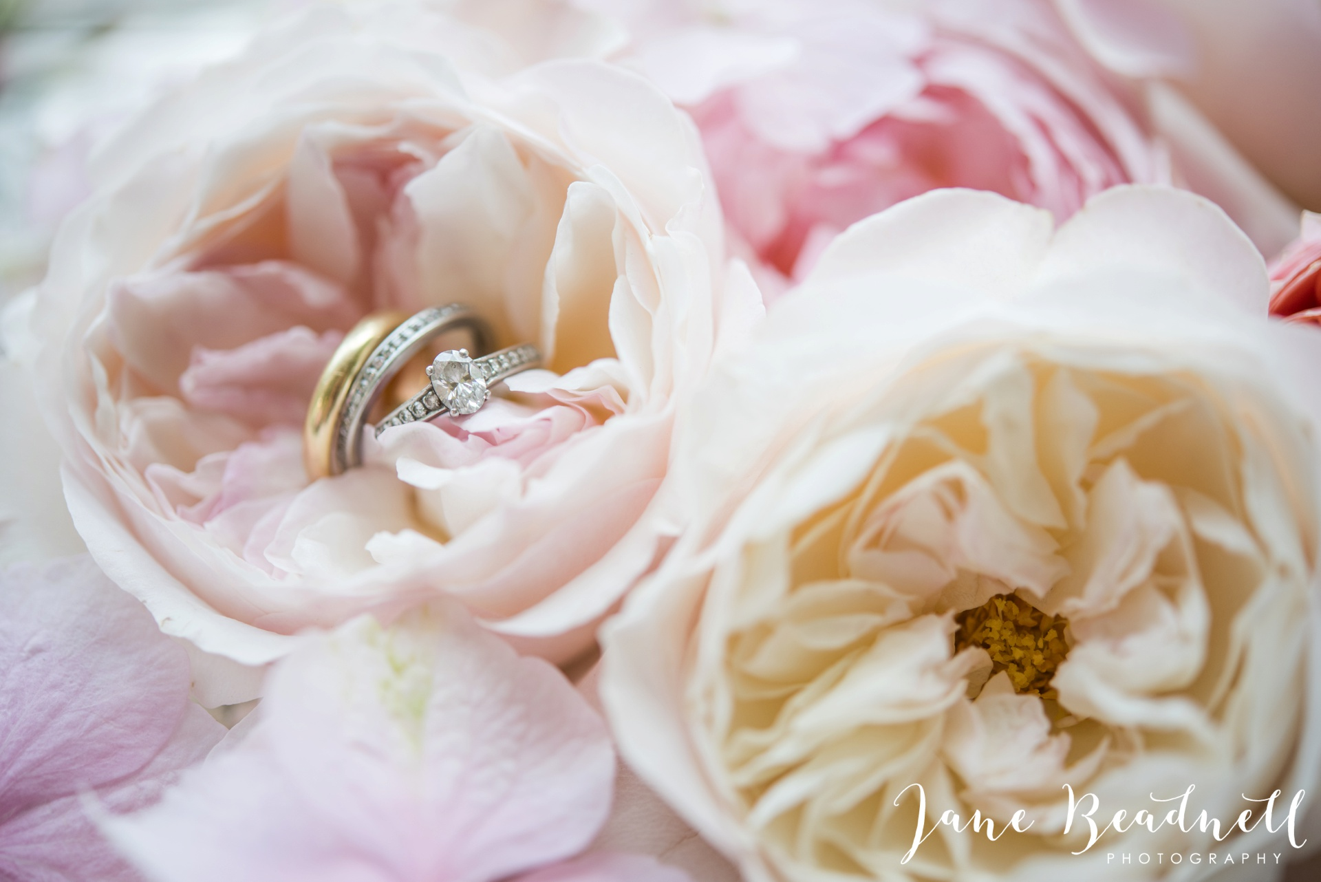 Fine art wedding photography by Jane Beadnell Photography Leafy Couture wedding flowers_0021