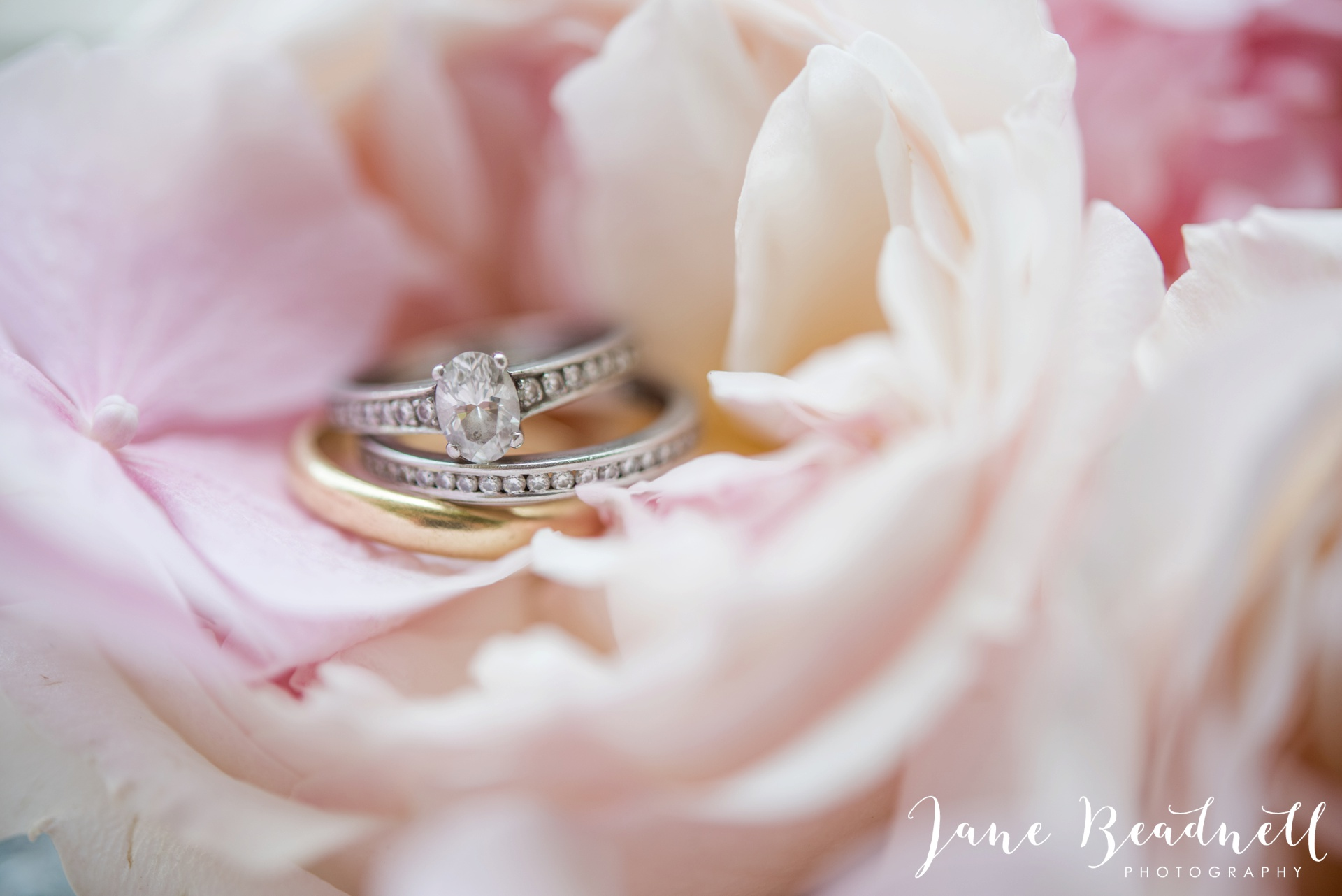 Fine art wedding photography by Jane Beadnell Photography Leafy Couture wedding flowers_0022