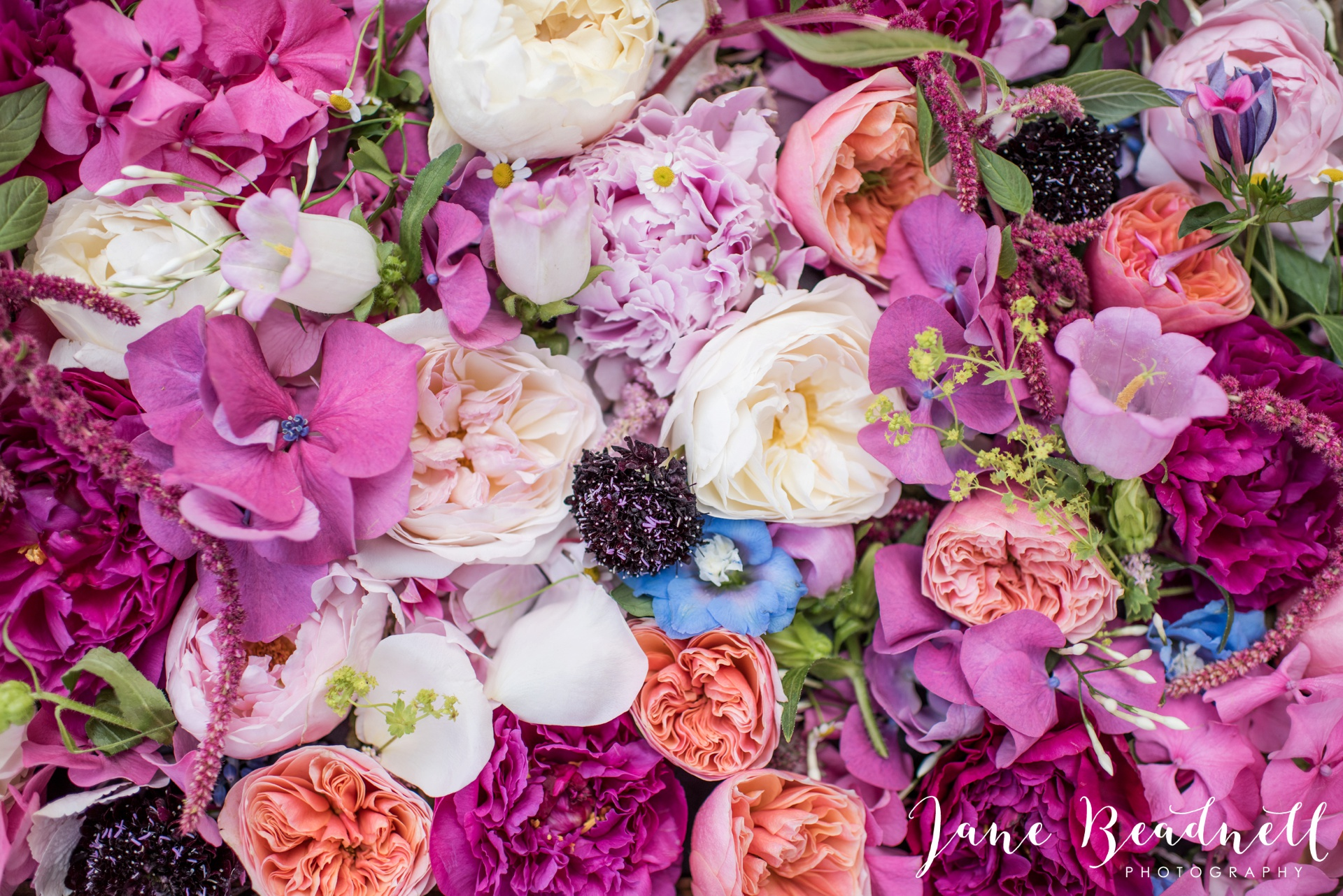 Fine art wedding photography by Jane Beadnell Photography Leafy Couture wedding flowers_0055