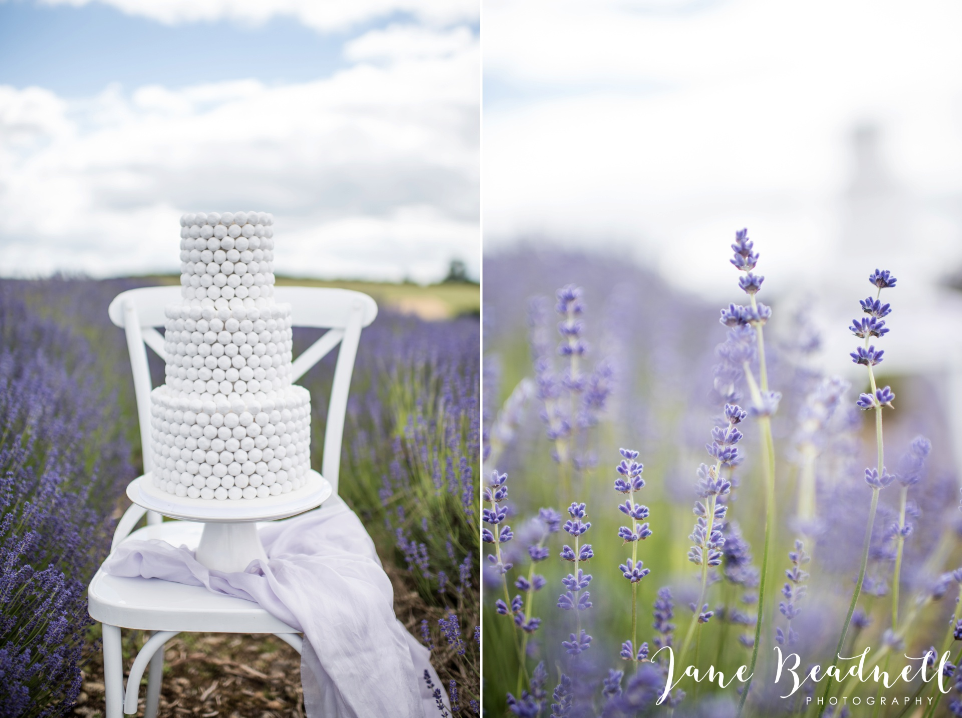 Cotswold Lavender wedding photography by Jane Beadnell Photography_0001