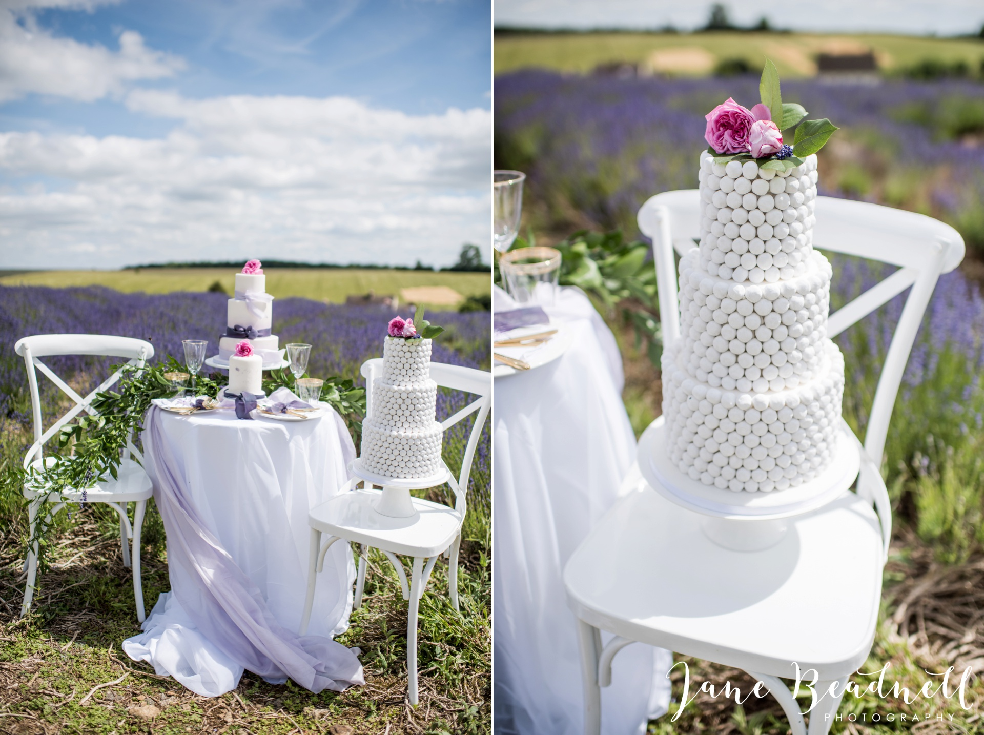 Cotswold Lavender wedding photography by Jane Beadnell Photography_0026