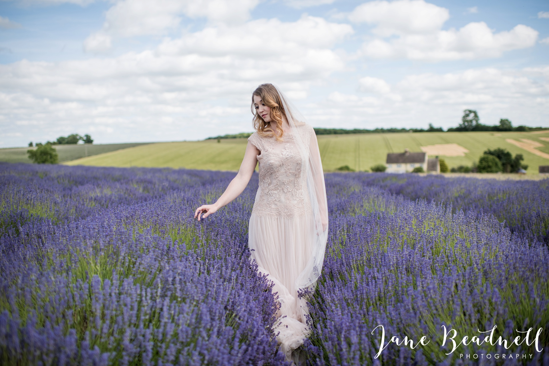 Cotswold Lavender wedding photography by Jane Beadnell Photography_0055