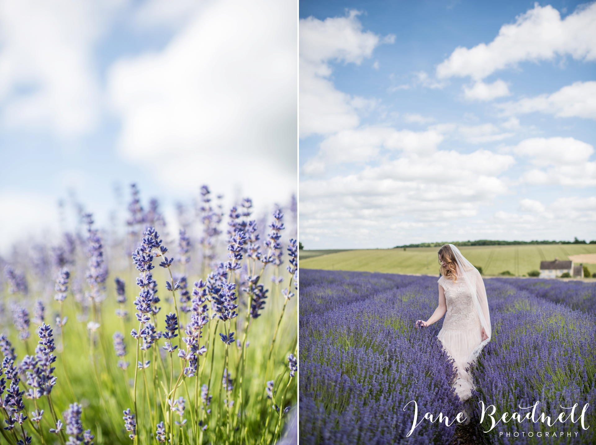 Cotswold Lavender wedding photography by Jane Beadnell Photography_0068