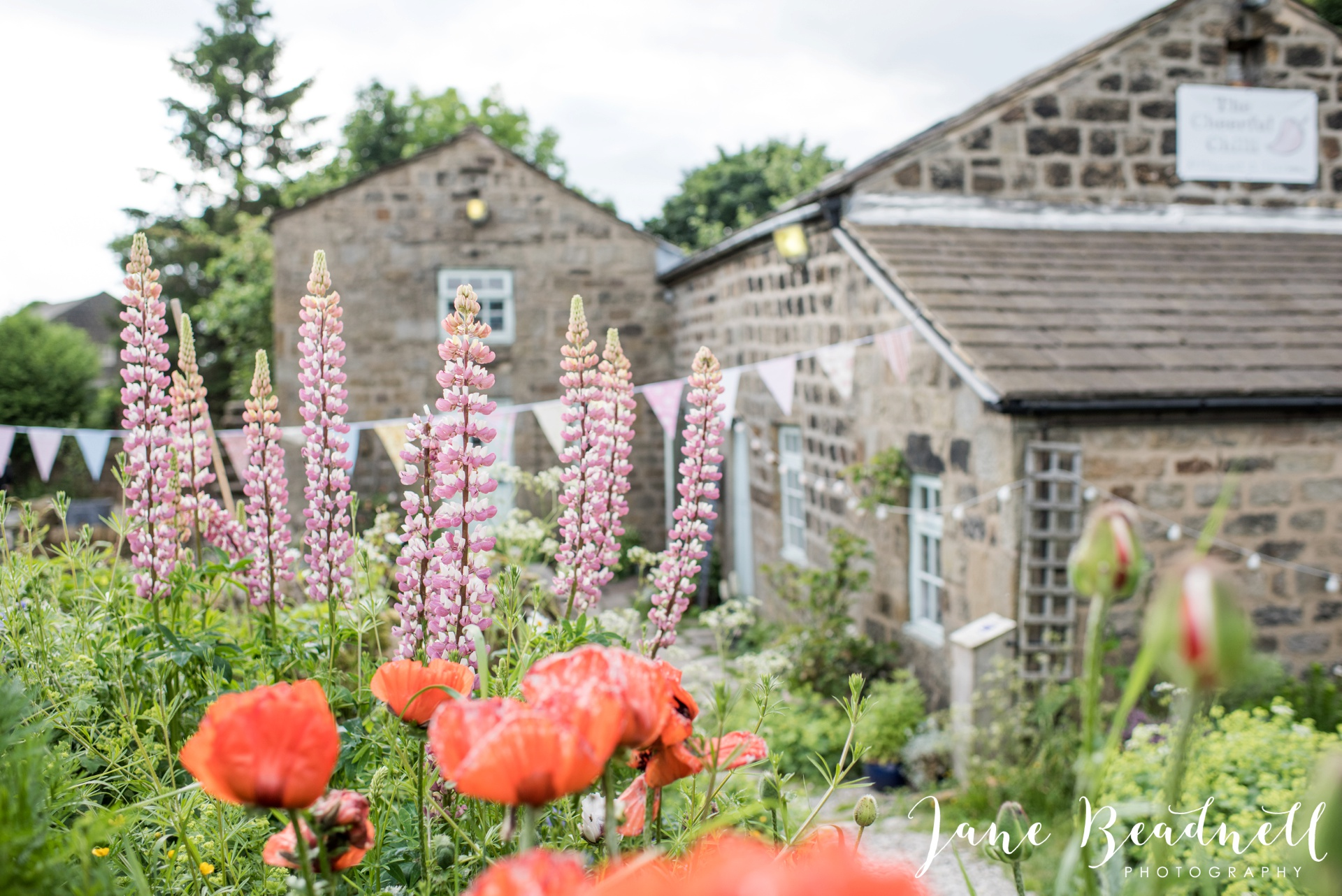 Yorkshire Wedding Photography the cheerful Chilli Barn Wedding by Jane Beadnell Photography_0121